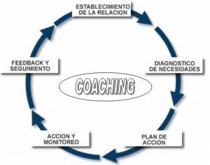 proceso y etapas coaching empresarial